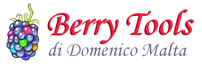 Logo Berry Tools Trasparente